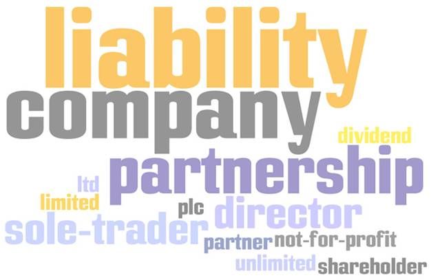 Sole trader, business partnership, company structure